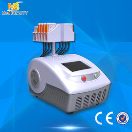 চীন Double Wavelength 650nm 980nm Lipo Laser Slimming Machine Lumislim Japan Mitsubishi পরিবেশক